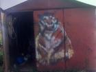 Увидеть изображение  Продам гараж 36767837 в Перми