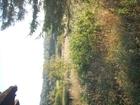 Скачать бесплатно фото  продам зем, уч, ИЖС 5 сот, + пол дома бревенчатого в ПОДАРОК! 32751356 в Петрозаводске