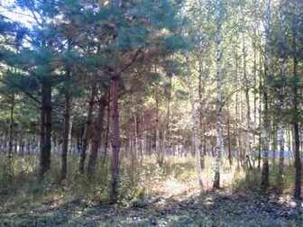 Свежее фотографию  Продам земельный участок 13,5 соток 35226465 в Рязани
