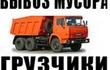 Предоставляем услуги по Вывозу мусора.