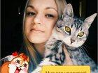 Фотография в   Молодой, красивый, энергичный кот ищет кошечку в Ростове-на-Дону 0