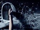 Увидеть изображение Организация праздников Снежное шоу в Ростове 35985942 в Ростове-на-Дону