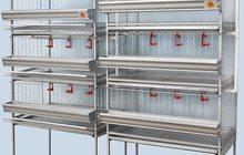 Клетка для кур: Несушек - Бройлера - Перепелов