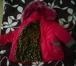 Foto в   Продам зимний комбез на девочку. Рост 122см. в Ростове-на-Дону 3200
