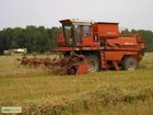 Фото в Услуги компаний и частных лиц Сельхозработы Нанемаюсь на зерноуборочные работы двумя в Сальске 0
