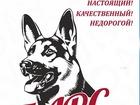 Просмотреть фото Корм для животных Сухой корм премиум класса для взрослых собак 52123685 в Самаре