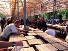 Фото в Хобби и увлечения Коллекционирование 15000 фирменных виниловых пластинок -aс-dc, в Санкт-Петербурге 200