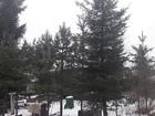 Смотреть изображение Земельные участки Земельный участок в уютном садоводстве 68899098 в Санкт-Петербурге