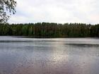 Смотреть foto Загородные дома Зимний дом в живописном месте, 68899123 в Санкт-Петербурге