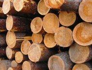 Продам пиловочник на срубы, лес на пилораму Продам пиловочник на сруб/ель/сосна.