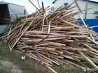 Скачать бесплатно фотографию Разное дрова сосновые обрезки,опилки,стружка 68383623 в Саратове