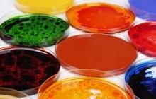 «Униконс Колор»: водо- жирорастворимые пищевые красители и лаки