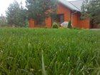 Фото в Строительство и ремонт Ландшафтный дизайн Профессиональная укладка газона. Озеленение в Серпухове 0