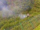 Фото в   Уничтожение насекомых и грызунов в городе в Серпухове 0