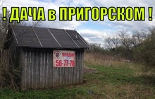 Дачный участок в Пригорском