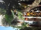 Свежее фотографию  Посуточная аренда комнат в Адлере до моря 1 минута, 36719060 в Сочи