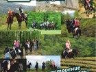 Скачать изображение Товары для туризма и отдыха Конные прогулки Сочи, Экскурсии верхом на лошадях Сочи, Конный клуб Триумф Сочи 40247893 в Сочи