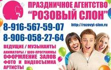 ведущая на свадьбу в Солнечногорске, тамада на юбилей Солнечногорск - Праздничное агентство Розовый слон