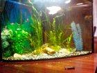 Фотография в Рыбки (Аквариумистика) Купить аквариум продам треугольный аквариум 90-100 л. б\ в Старый Крым 3000