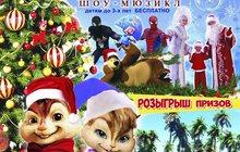 Шоу-мюзикл Новый год на дальних берегах