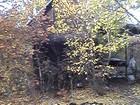 Просмотреть foto Фотокамеры и фото техника Продаю дачу! 37598093 в Таганроге