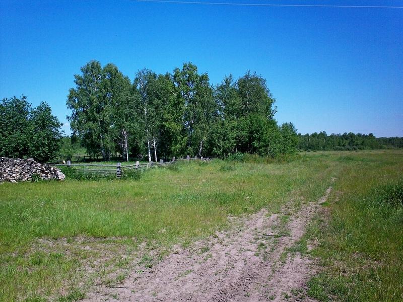 продаю землю панкрушихинский район александр административно-территориальному
