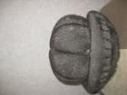 Смотреть фотографию Сетевое оборудование продам шапку женскую 38486679 в Тобольске