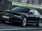 Седан Audi в Томске фото