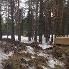 Продам земельный участок в Томском районе по адресу пос, Некрасово