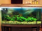 Смотреть изображение  Система освещения аквариума Jebo R3100 (Jebo R-3100 KG) 39047475 в Туле