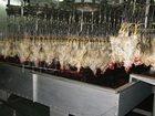 Скачать foto  Оказываем услуги по забою и переработки мяса птицы 35442490 в Уфе