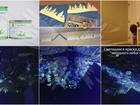 Новое foto Отделочные материалы Светящаяся краска для стен AcmeLight Interior 61220999 в Улан-Удэ