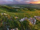Фото в   Краснодарский край – самый южный регион России, в Ульяновске 0