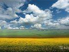 Новое фото Земельные участки Участок в с, Кодахджин, 10 сот 32378385 в Владикавказе
