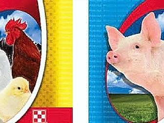 Скачать бесплатно foto Корм для животных Purina корма и концентраты 34672652 в Владикавказе