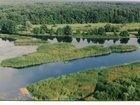 Смотреть фото Разное Аренда катера Bayliner для прогулок и отдыха 33255152 в Воронеже