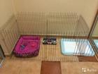 Просмотреть фотографию  Квартирные вальеры для животных 35027073 в Воронеже