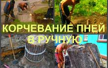 Корчевание пней в Воронеже, выкорчевать пень