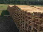 Поддоны деревянные 1200х800мм. от производителя