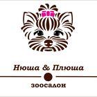 Стрижка собак и кошек, груминг в Звенигороде, Зоосалон Нюша&Плюша